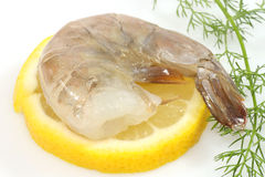 Raw shrimp Stock Photos