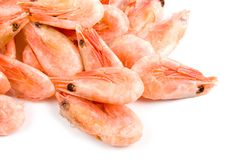 Raw shrimp Stock Photos