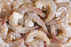 Raw Shrimp. Prepare for cooking Stock Image