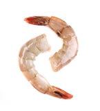 Raw shrimp Stock Image