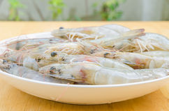 Raw shrimp in dish Stock Photos