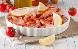 Raw shrimp Royalty Free Stock Photography