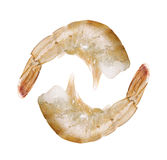 Raw shrimp isolated on white Stock Photos