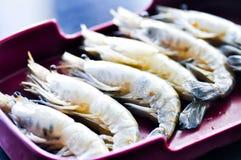 Raw shrimp,raw prawn Royalty Free Stock Photos