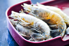 Raw shrimp , raw prawn dish Royalty Free Stock Photos