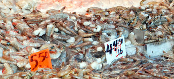 Raw Shrimp in a Seafood Market. Different grades of raw shrimp in a seafood market  ready for purchase Stock Photo