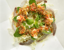 Raw shrimp and spicy sauce, seafood thailand. Spicy salad shrimp in fish sauce Stock Image