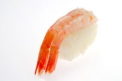 Raw shrimp sushi Stock Images