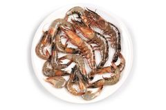 Raw shrimp on a white table. Royalty Free Stock Photos