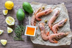 Raw shrimps with avocado and lemon wedges Stock Image