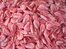 Raw shrimps background Stock Images