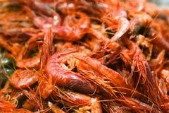 Raw shrimps Royalty Free Stock Image