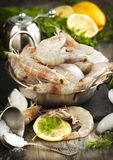 Raw Shrimps on ice with fresh dill and lemon Stock Photos