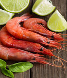 Raw shrimps with lime and herbs Stock Photography