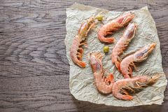 Raw shrimps Stock Photos