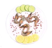Raw shrimps on plate. Close up. Royalty Free Stock Photos