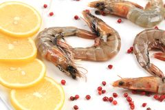Raw shrimps on plate. Close up. Stock Photo
