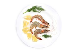 Raw shrimps on plate with lemon and dill. Royalty Free Stock Photo