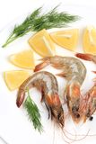 Raw shrimps on plate with lemon and dill. Stock Images