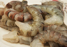 Raw Shrimps Royalty Free Stock Photography
