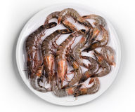 Raw shrimps Royalty Free Stock Images