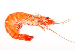 Raw shrimps on white Stock Photos