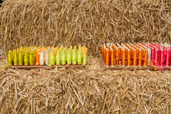 Raw silk and straw Stock Photography