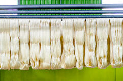 Raw silk thread Stock Image