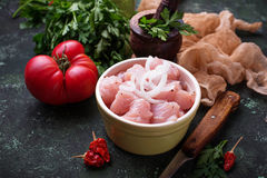 Raw sliced chicken meat ready for cooking. Selective focus Royalty Free Stock Photo