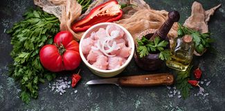 Raw sliced chicken meat ready for cooking. Selective focus, banner for site Stock Images