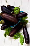 Raw Small Eggplants Royalty Free Stock Photos
