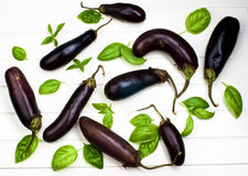 Raw Small Eggplants Royalty Free Stock Photography