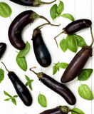 Raw Small Eggplants Stock Photography