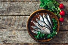 Raw smelt fishes Stock Image