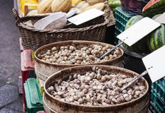 Raw snails alive for sale in the fish market of Catania, Sicily, Italy royalty free stock image