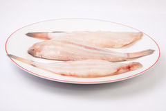 Raw sole fish Stock Images
