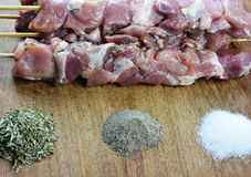Raw souvlaki with spices Royalty Free Stock Photography