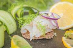 Raw spiced white fish Stock Image