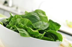 Raw spinach leaves on the countertop of a kitchen. Closeup of a bowl with spinach leaves on the countertop of a kitchen Stock Photography