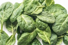Raw spinach leaves on white plate. Closeup Royalty Free Stock Photography