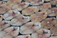 Raw spotted mackerel Royalty Free Stock Photo