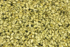 Raw Sprouted Pumpkin Seeds Stock Photography