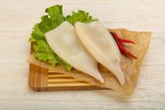 Raw squid fillet Stock Photos