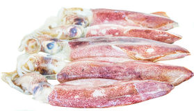 Raw Squid III Royalty Free Stock Images