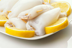 Raw squid ready to be cooked in plate and cut lemons Royalty Free Stock Image