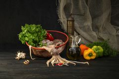 Raw squid and vegetables Stock Images