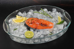 Raw steak of salmon on ice cubes Stock Image