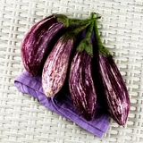 Raw Striped Eggplants Stock Photos