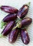 Raw Striped Eggplants Stock Photo
