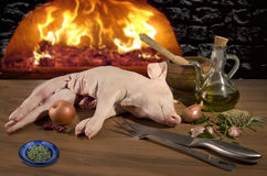 Raw suckling pig  meat Royalty Free Stock Image